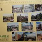 Преподавание в Южно-Корейских университетах