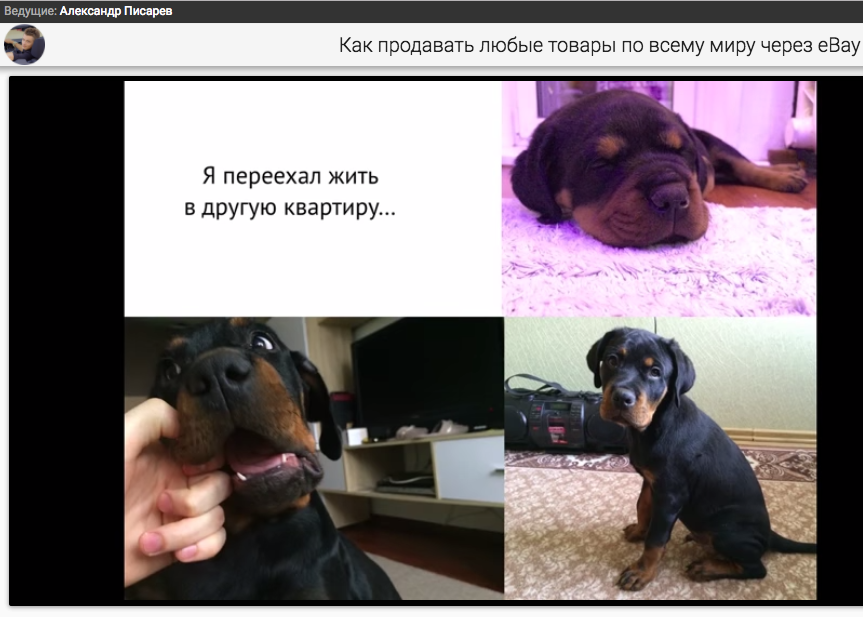 Александр Писарев мошенник